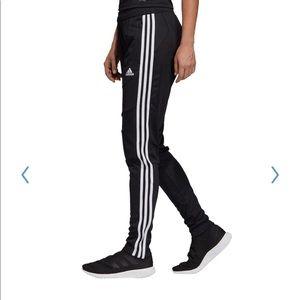 Women's adidas Tiro 19 Pants